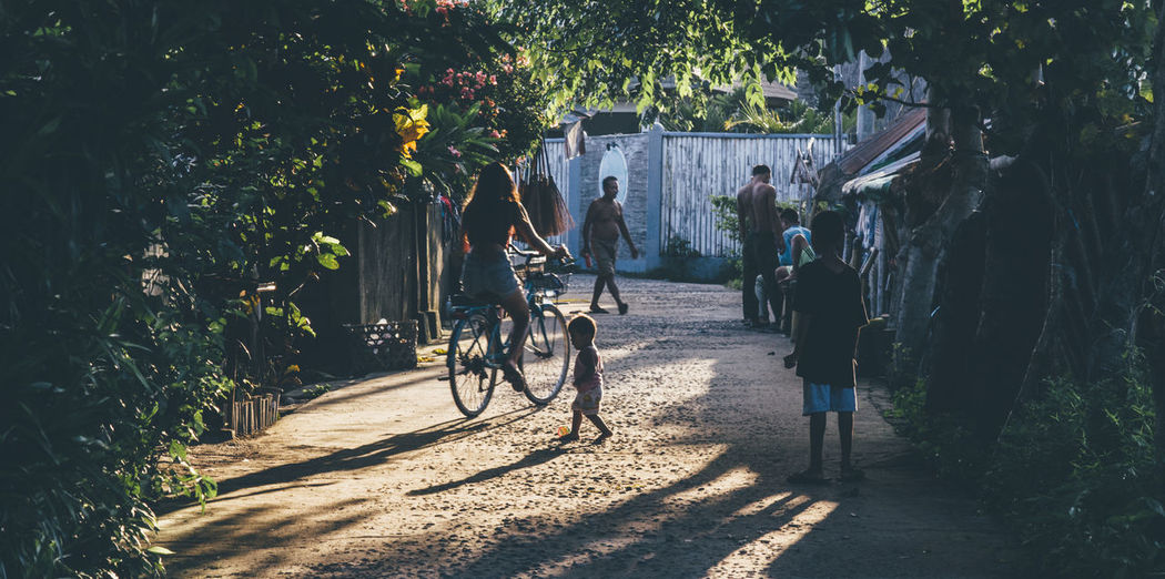 Rear view of woman on bicycle against trees