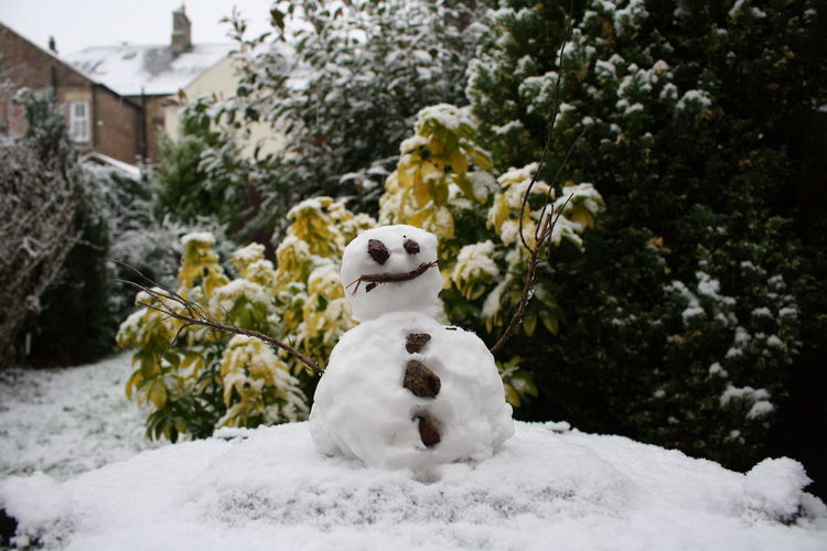 Snow man in front of trees