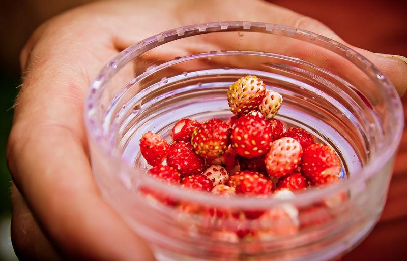 Berries for joy