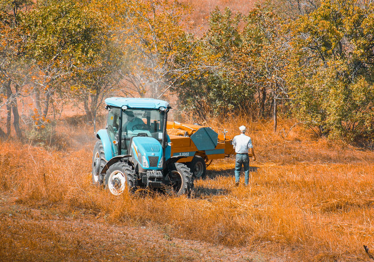 People working on field during autumn
