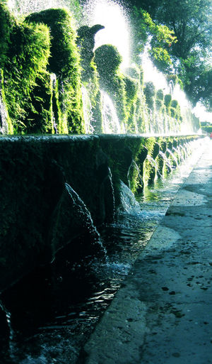 Villa d´este Beauty In Nature Day Hydroelectric Power Irrigation Equipment Motion Nature No People Outdoors Sky Spraying Tree Water Waterfall