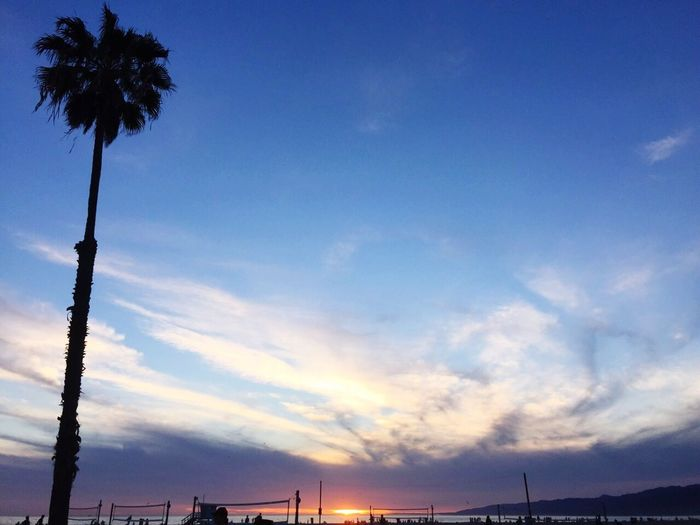 Sunset California Sunset Los Ángeles Palm Trees Aynaphotography Sunshine Relaxing Enjoying The Sun I Love It ❤ Clouds And Sky