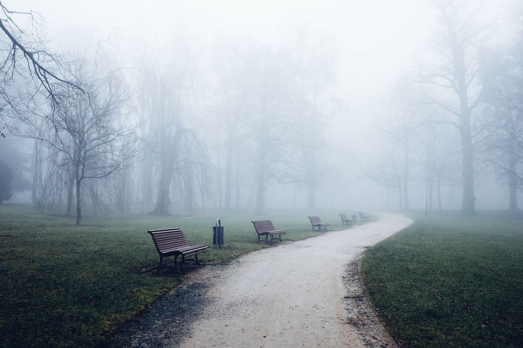 Empty bench in park during winter