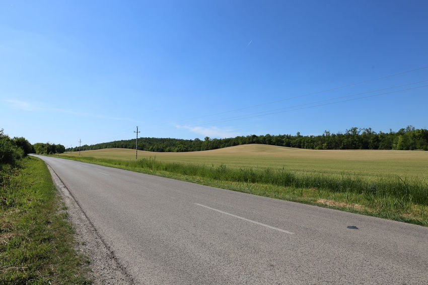 Asphalt Beauty In Nature Blue Clear Sky Day Diminishing Perspective Empty Field Grass Landscape Nature No People Outdoors Road Rural Scene Scenics Sky The Way Forward Tranquil Scene Transportation Tree