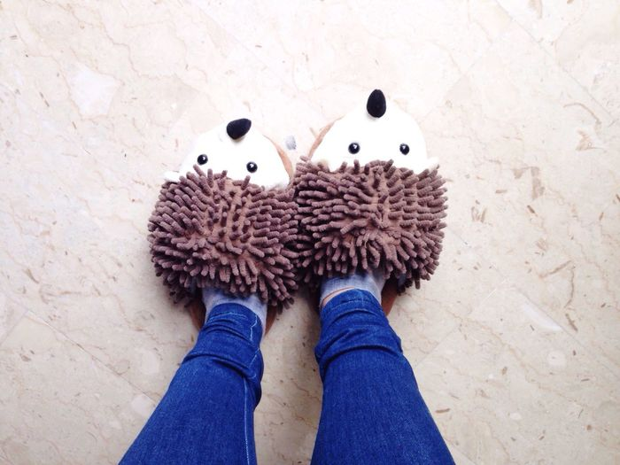 Low section of woman with porcupine shoes standing at home