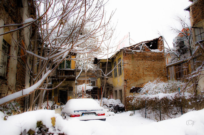 Snow covered houses and trees by building during winter