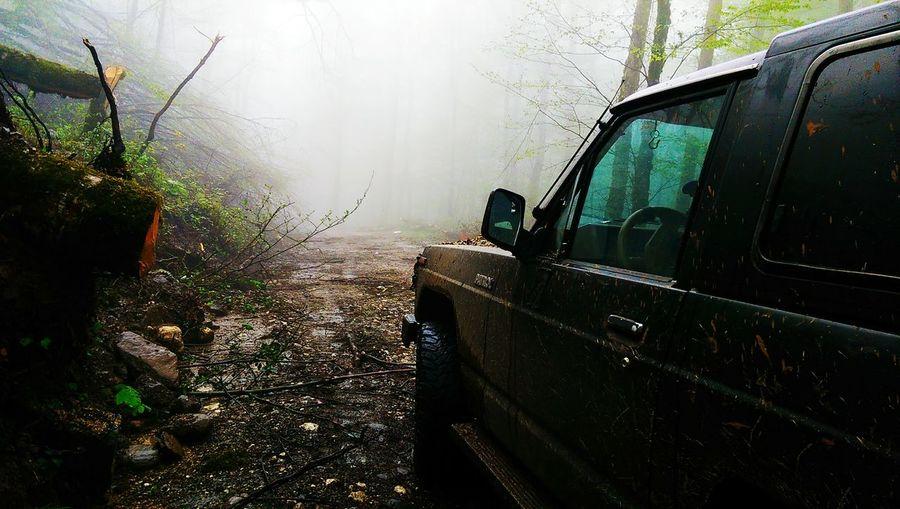 Car Fog Foggy