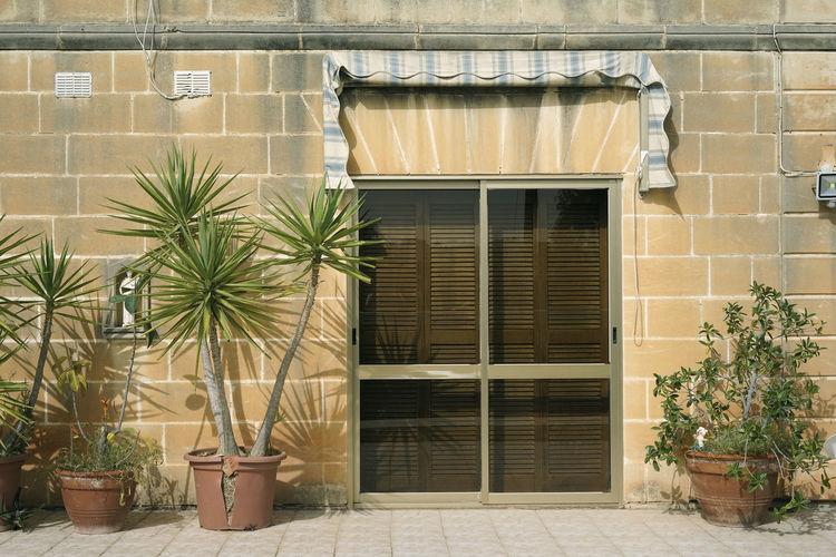 Malta Malta Architecture Malta Flat Malta Houses Palm South European Architecture