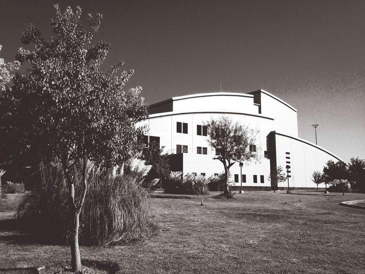 Centro Cultural Nuevo Laredo. Architecture Art