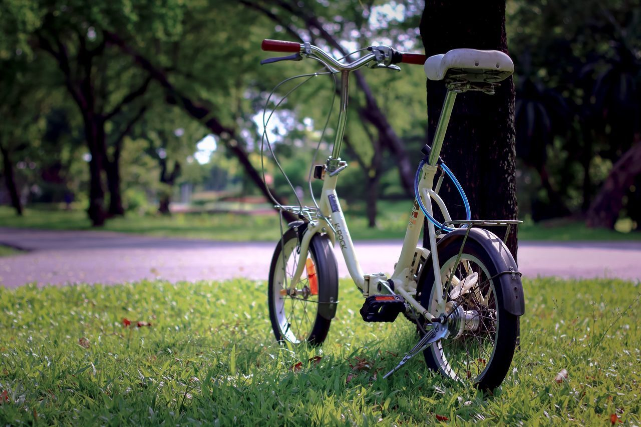 transportation, land vehicle, grass, day, bicycle, tree, field, stationary, mode of transport, focus on foreground, outdoors, no people, nature, green color, growth, beauty in nature