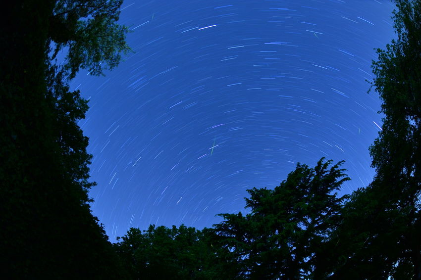 Night Astronomy Tree Space Constellation Blue Nature Sky Low Angle View Silhouette Outdoors Landscape Long Exposure No People Starry Starry Night Nightsky Night Time Nightscape Night Sky