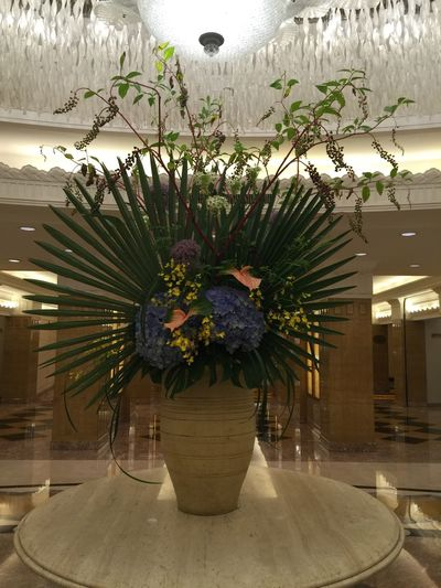 Flowers Beautiful Hotel July