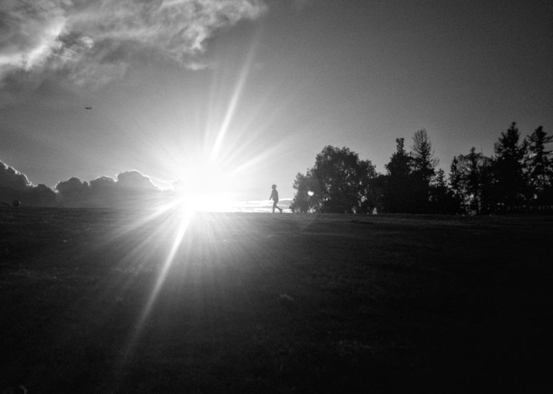 Adapted To The City Sunlight Sunbeam Full Length Tree Lens Flare Sky Sun Outdoors Leisure Activity Nature One Person Bkack&withe Blackandwhite Mobilephotography Oneplus2 The City Light Welcome To Black Black And White Friday