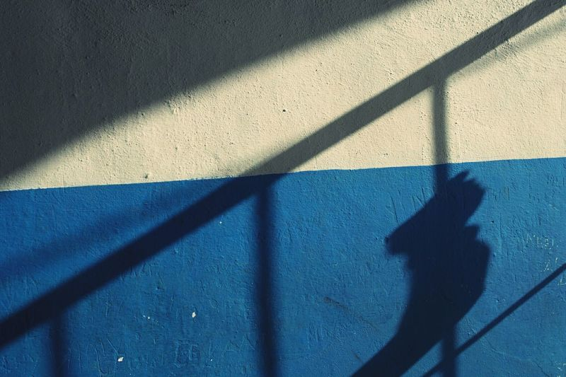 Shadow of person and bars on wall