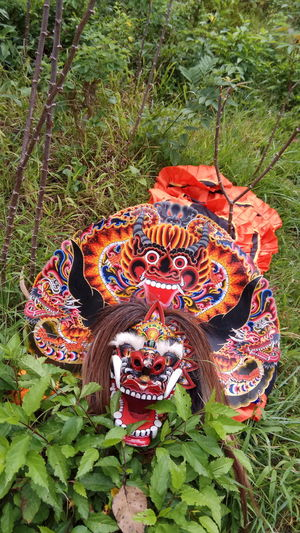 Multi Colored Grass No People Outdoors Animal Themes Day Close-up Chinese Dragon Nature