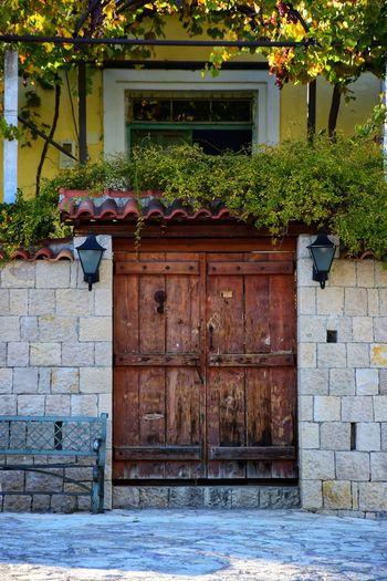 Potted plants against door