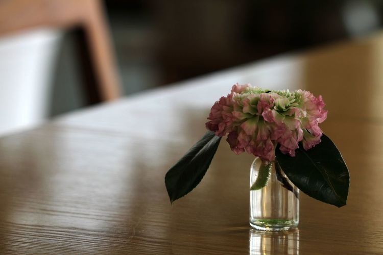 Close-up of rose in vase on table at home