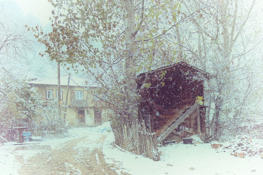 Snowy Road Architecture Barn Building Exterior Built Structure Cold Temperature Home Landscape Muddy Nature Outdoors Snow Snow ❄ Snowy Structure Sünnetköy Tree Trees Village Village Life Winding Road Winter Landscape Wood - Material