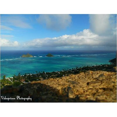 From the Pillboxes to Lanikai Photography By: @Videoprince Hawaii Oahu Luckywelivehi HiLife 808  Alohastate Beautiful Venturehawaii Instagram Instatravel Hnnsunrise Photographer Cameralife Photography Cameraready Beach Sand Ocean Kailua  Lanikai  Windward Hikinglife Adventures Hawaiiunchained
