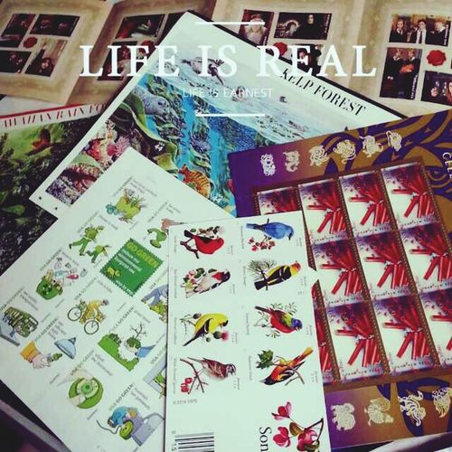 Hobby Collecting Stamps