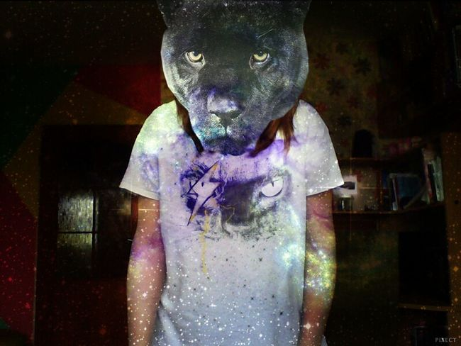 Cat Keep Calm And Followme Galaxy That's Me