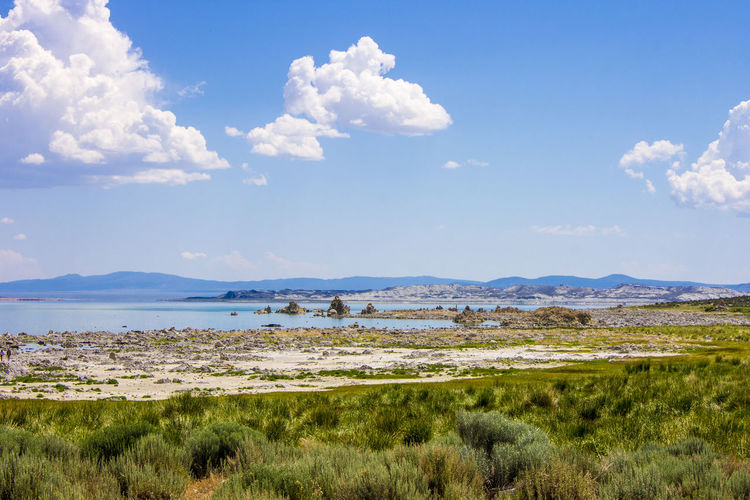Mono Lake, a large, shallow saline soda lake in Mono County, California, with tufa rock formations Beach Beauty In Nature Blue Cloud - Sky Day Grass Lake Landscape Mono Lake Mono Lake California Mountain Nature No People Outdoors Scenics Sea Sky Tranquil Scene Tranquility Tufa Water