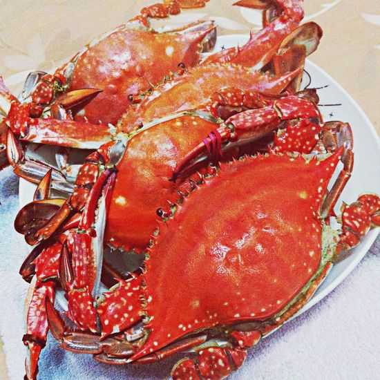 螃蟹 Crab From Dalian Food