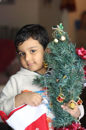 Adult Celebration Child Childhood Christmas Christmas Decoration Christmas Ornament Christmas Present Christmas Tree Close-up Day Domestic Life Gift Human Body Part Indoors  Males  One Boy Only One Person People Portrait Tradition Tree