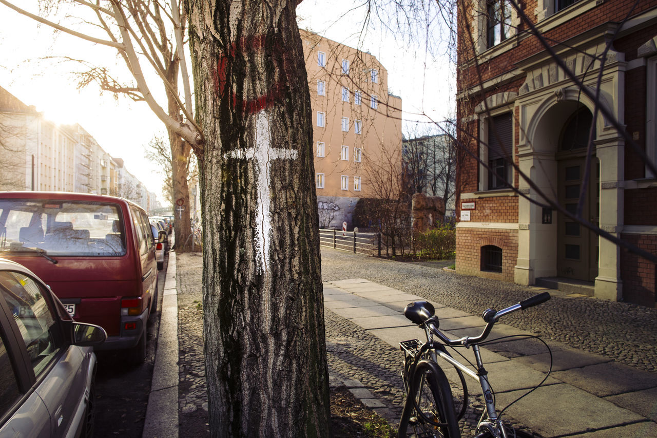 transportation, land vehicle, mode of transport, bicycle, stationary, architecture, parking, tree, car, day, street, outdoors, built structure, building exterior, travel, bare tree, city, sunlight, tree trunk, no people