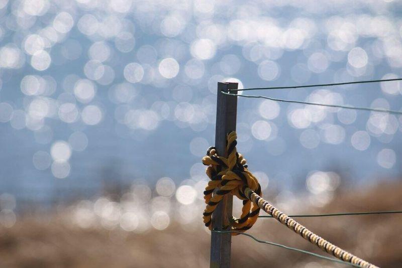 いつかの景色 キラキラ 繋がる想い ボケ味ふぇち 海沿いを走ってみたい。潮騒ドライブ✨💛 コブクロ 聴きながら♡ 妄想ふぇち お天気良くなれ!