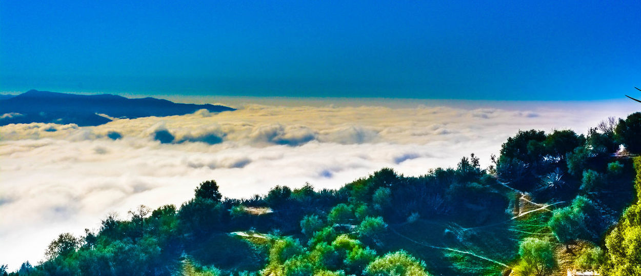 The heaven Sky Cloud - Sky Cloudy Mountain Mountain View Forest Beauty In Nature Green Color Relaxing Leaves🌿 Weather Eye4photography  EyeEm Best Shots EyeEm Nature Lover Bokeh Photography EyeEm Selects Textured  Nture_perfection Top View Sky Morocco