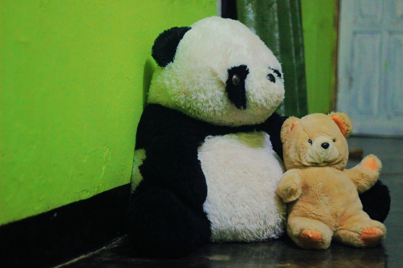 VIEW OF STUFFED TOY IN THE ANIMAL