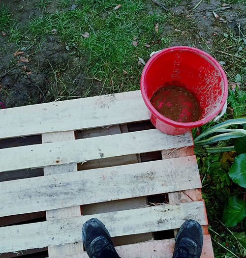 Working Red Grass Day Shoe One Person Low Section One Man Only Human Body Part Bucket Planks Dirty Weather Bad Condition