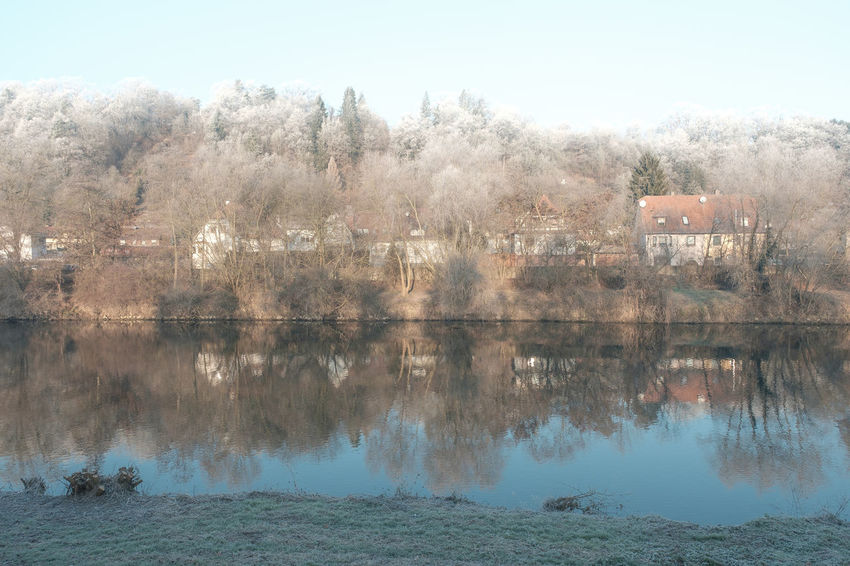 Beauty In Nature Clear Sky Day Frost Lake Nature No People Outdoors Reflection River Neckar Sky Southern Germany Tree Water Wintertime