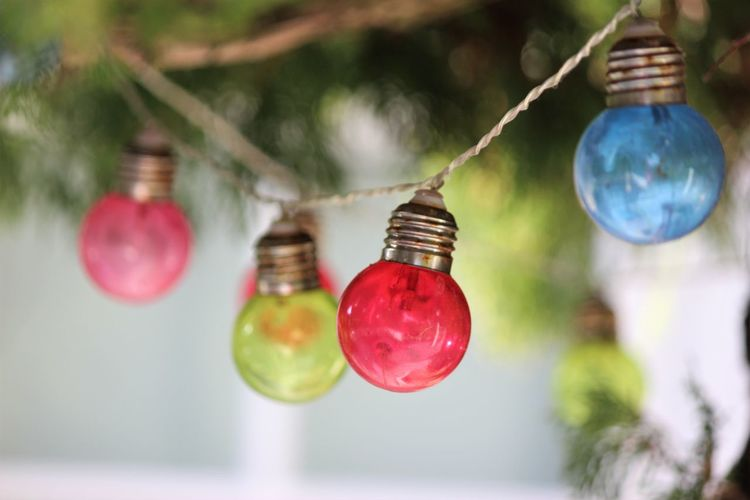 Hanging Focus On Foreground Decoration Red Close-up Celebration No People Tree Selective Focus String Day Christmas Decoration Christmas Plant Outdoors Christmas Ornament Holiday Lighting Equipment Food