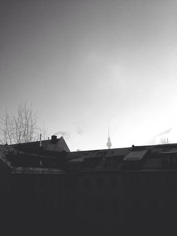 Berlin Winter Sunshine