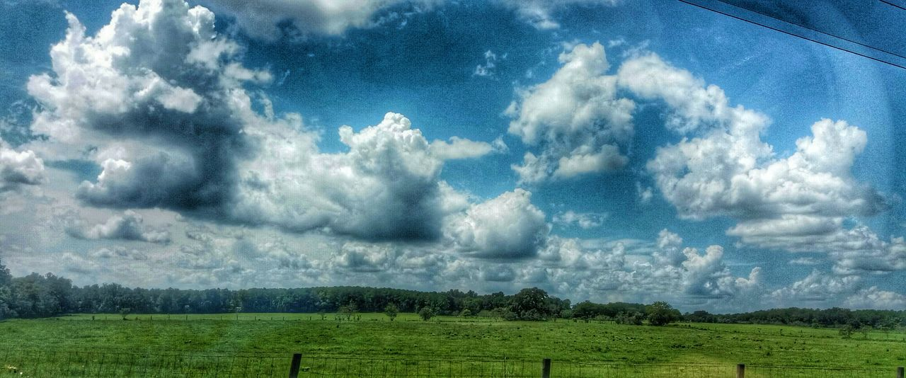 CarmenVazquezPhotography Ocala Florida MyPics Naturephotography Eye4photography  Countryside Cloud - Sky Hdrphotography Nature Green Field Grass HDR Skies And Clouds