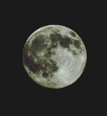 The thing that orbits earth Nikon D3200 Full Moon Mr. Moon