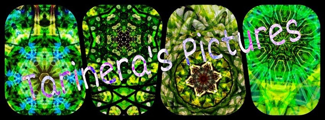 Tarineras Pictures Mosaik Textures And Surfaces Nature Photography Mosaic Raster Kaleidoscope Nature Textures My Art Tarinera Texture Idyllic