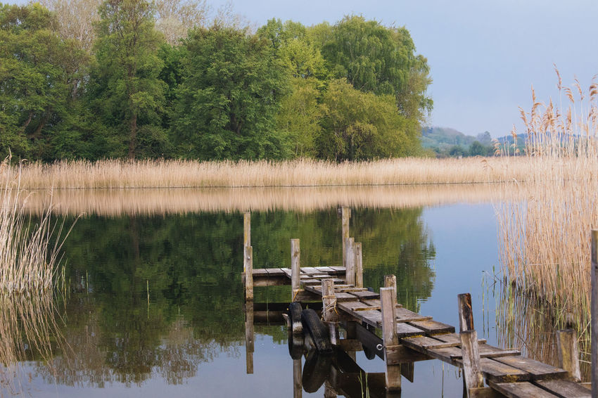 Beauty In Nature Day Growth Lake Landing Stage Mecklenburg-Vorpommern Nature Nature No People Outdoors Reflection Scenics Sky Tranquil Scene Tranquility Tree Water Waterfront