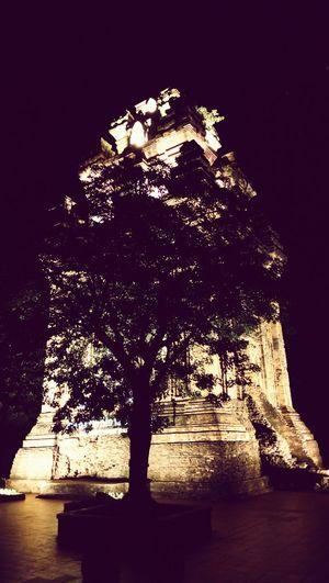 Vietnam Temple Cham Temple Night Tree