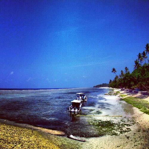 Diving Divetrip Liquiddive Wangi island sea indonesia beach sky blue traveling photography instadonesia instanusantara mytravelgram mtgang lookingoutatsea followme