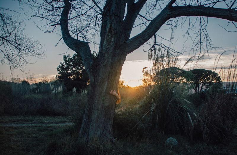 El mundo mágico de Alicia Tree Nature Woman In Nature Wonderland Wonderland✨ Woman Light And Shadow Sun Light Sunset Calm Summer Backlight Green