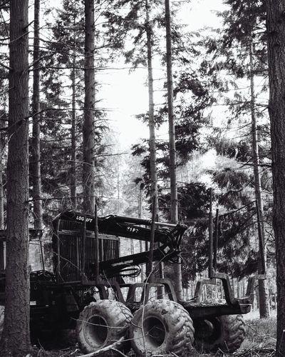 Manvsnature  Machine Woods WoodLand Forest Tree Trees