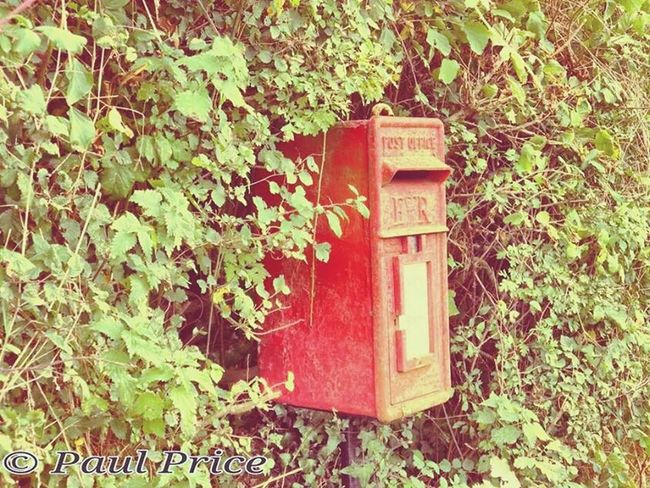 Postbox Curiosities Mailbox Red