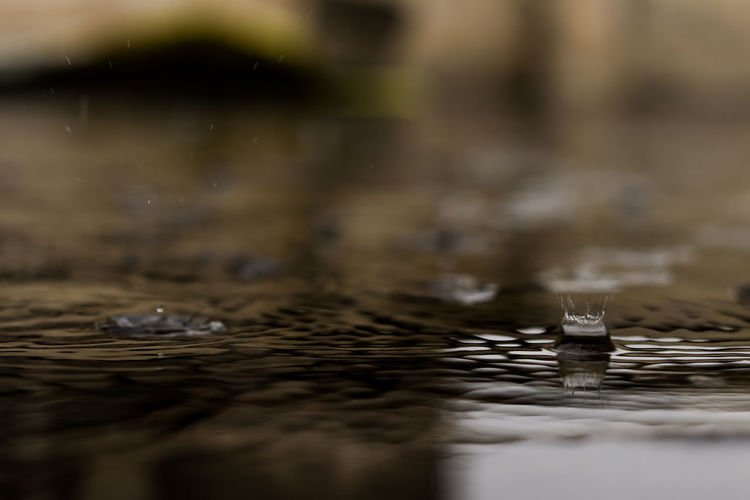 50mm F1.8 EyeEm Gallery Canon Eos  Blurred Motion Close-up Raindrops Canonphotography Droplets Drops Of Water Canon80d RainDrop Rain No People Outdoors