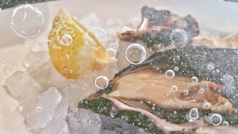 Ice Ostrich Lemon Doubleexposure Aperitivo  UnderSea No People Indoors  Day Close-up Boubble Mix Yourself A Good Time