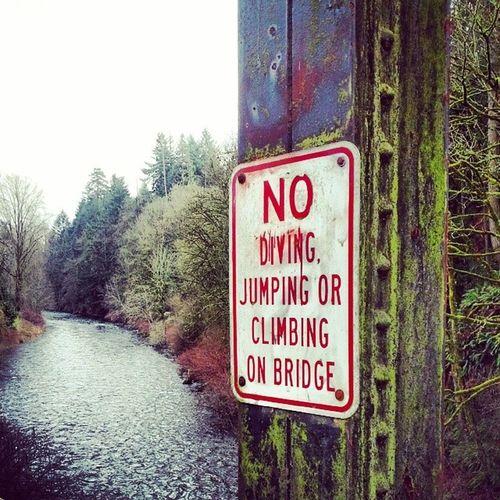 No diving! Bridge Sign