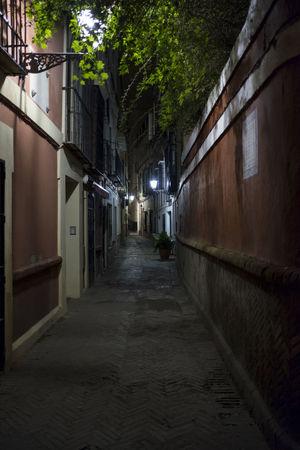 Sevilla Seville Streets Walkways  Street Photography