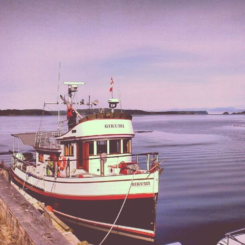 Whalewatching  Gikumi TelegraphCove Canada BC instagramhub instagood